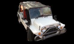 Mini Moke (1964-1993)